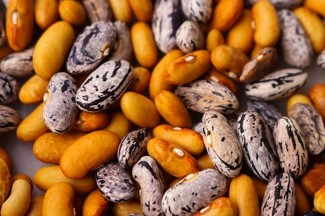 beans-1593833_640